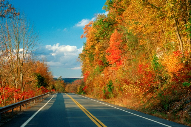 Upper Delaware Scenic Byway In Contest For Best Autumn